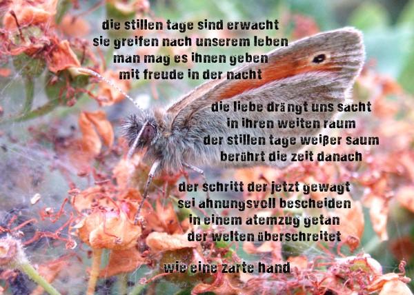 Wort Wellness für jeden Tag Branko Stahl Märchen Romane Lyrik