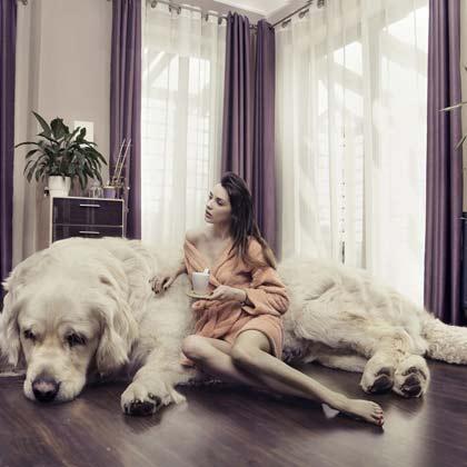 Werbeagentur Villingen Fotografie und Digital-Art