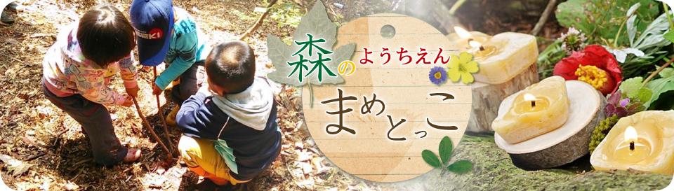 広島の森のようちえん まめとっこ