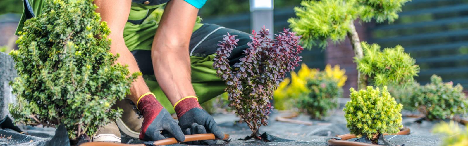 Karriere bei Gartentechnik Krause