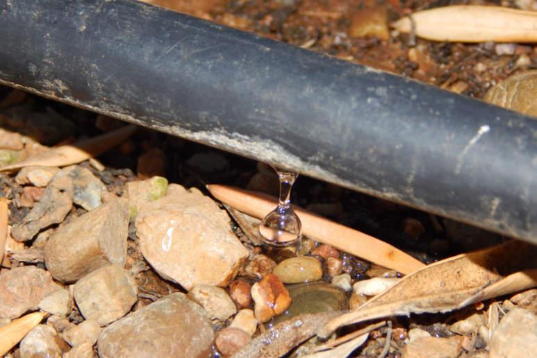 Krause - Technik für Ihren Garten, Tropf-Bewässerung