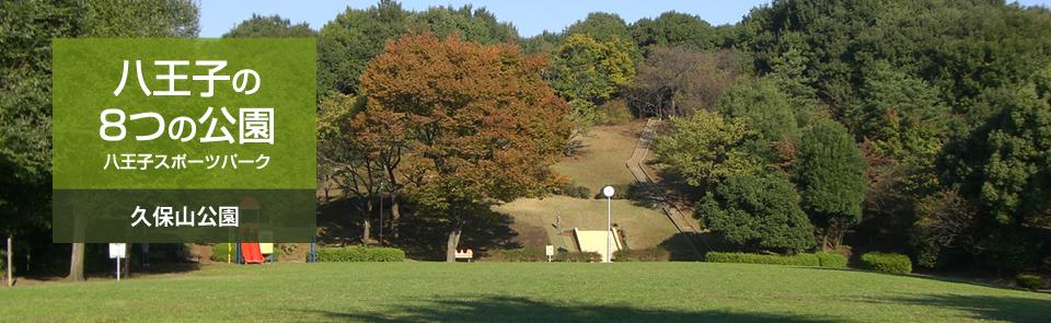 八王子の8つの公園 八王子スポーツパーク 久保山公園