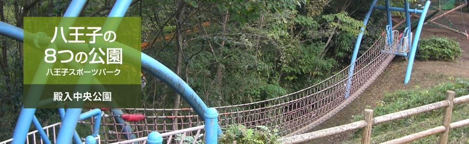 八王子の8つの公園 八王子スポーツパーク 殿入中央公園