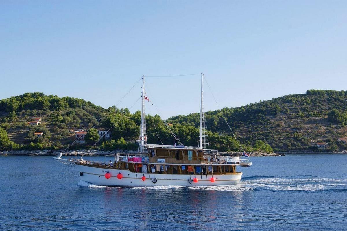MS Dalmatino