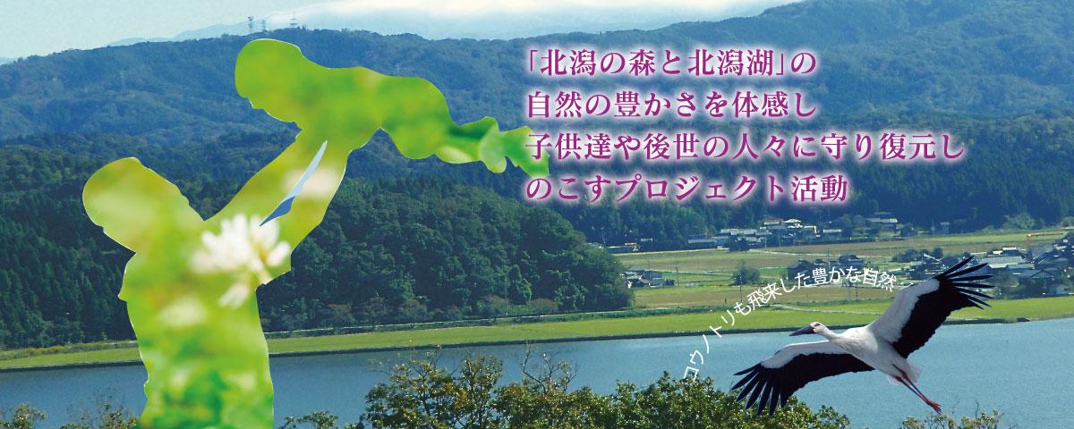 北潟の森と北潟湖の自然を守り残すプロジェクト活動