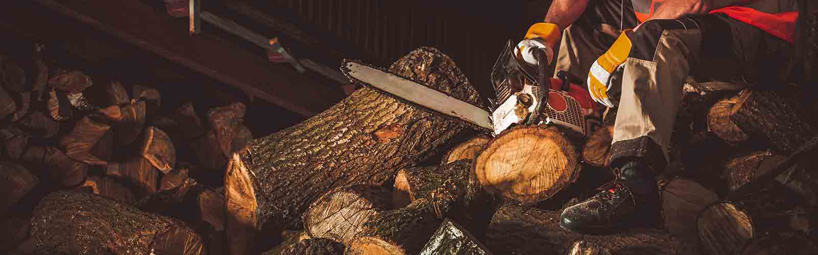 Baumpflege Rohrbeck - Holz schneiden