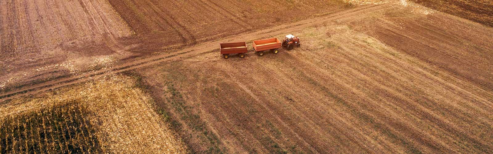 Baumpflege Rohrbeck - Lohnbetrieb Landwirtschaft