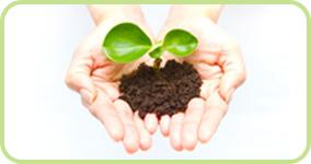 環境イメージの画像