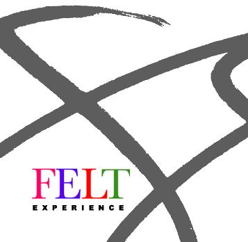 Felt Experience Logo
