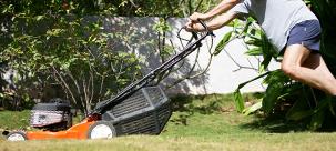 Ainter'Job entretien des espaces verts
