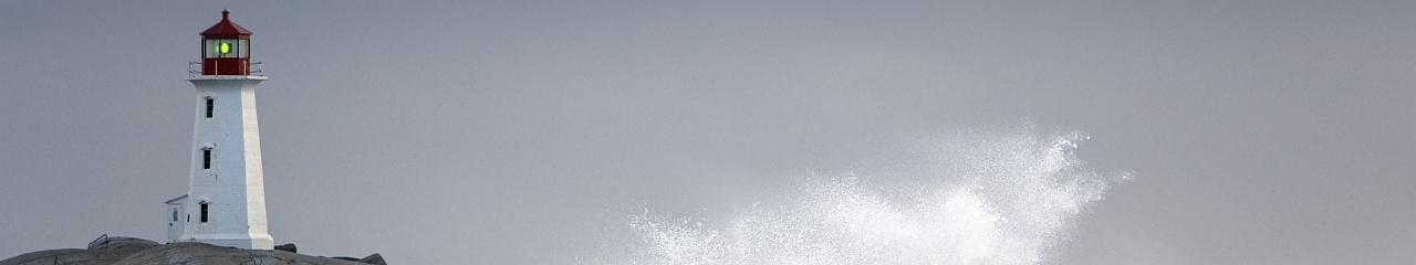 Deutsches Institut für angewandtes Insolvenzrecht e.V. - Sanierungsberatung, Eigenverwaltung, Schutzschirm, Sanierung unter Insolvenzschutz