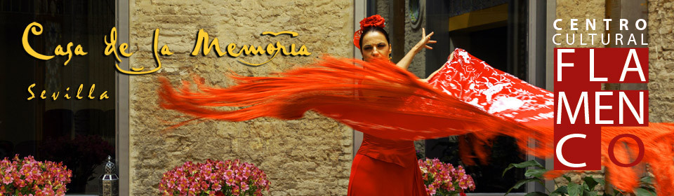 Casa de la memoria best traditional flamenco in seville for Espectaculo flamenco seville sevilla