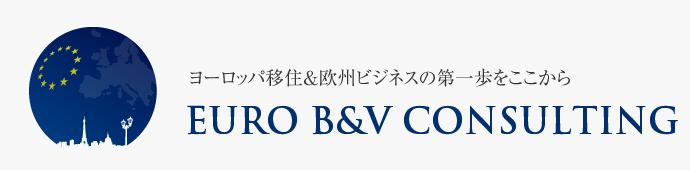 Euro B&V Consulting