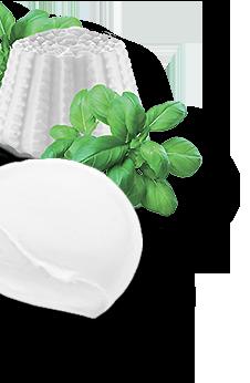Iannello Inox - Ricotta e Mozzarella