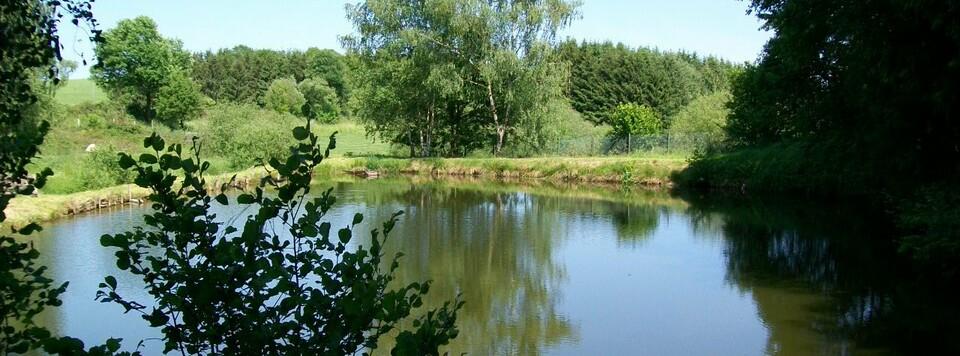 Angelpark Much Engeld Fischzucht Angelpark Much Engeld