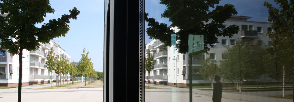 Geteilt Baum und Glas