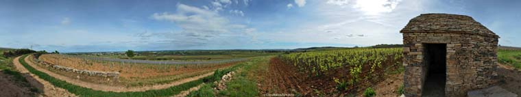 Clos-des-Mouches début juin