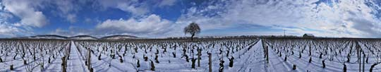 Beaune-Les-Tuvilains-Winter