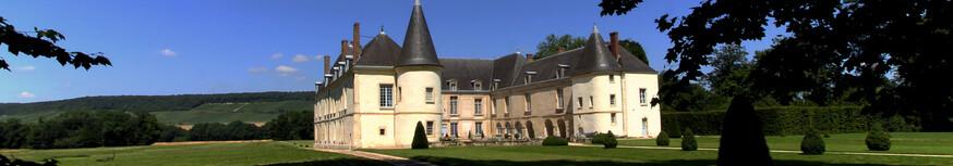 Chateau de Condé en Brie