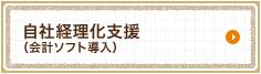 自社経理化支援(会計ソフト導入)