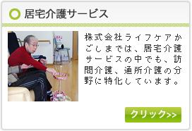 居宅介護サービス