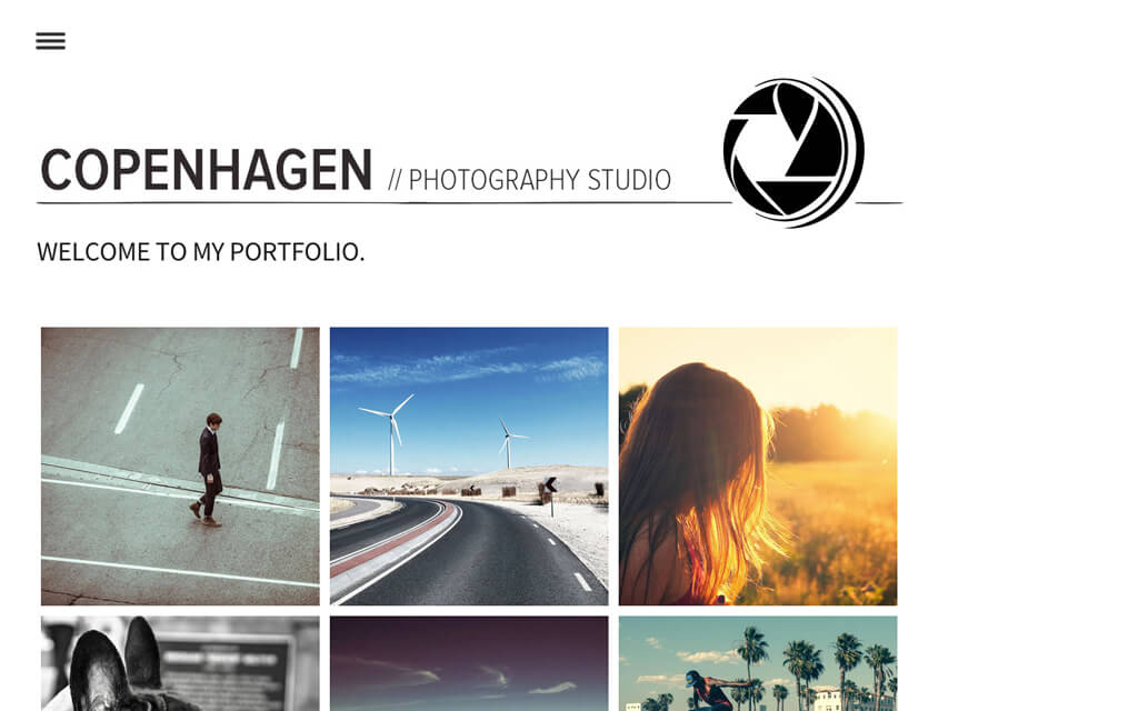 best websites for photographers review Zenfolio