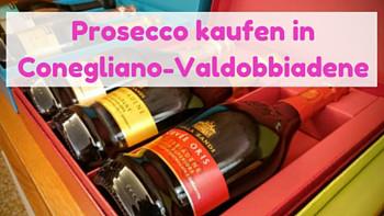 Prosecco kaufen in Caonegliano Valdobbiadene-Italien-Veneto-Lifetravellerz-luigiontour