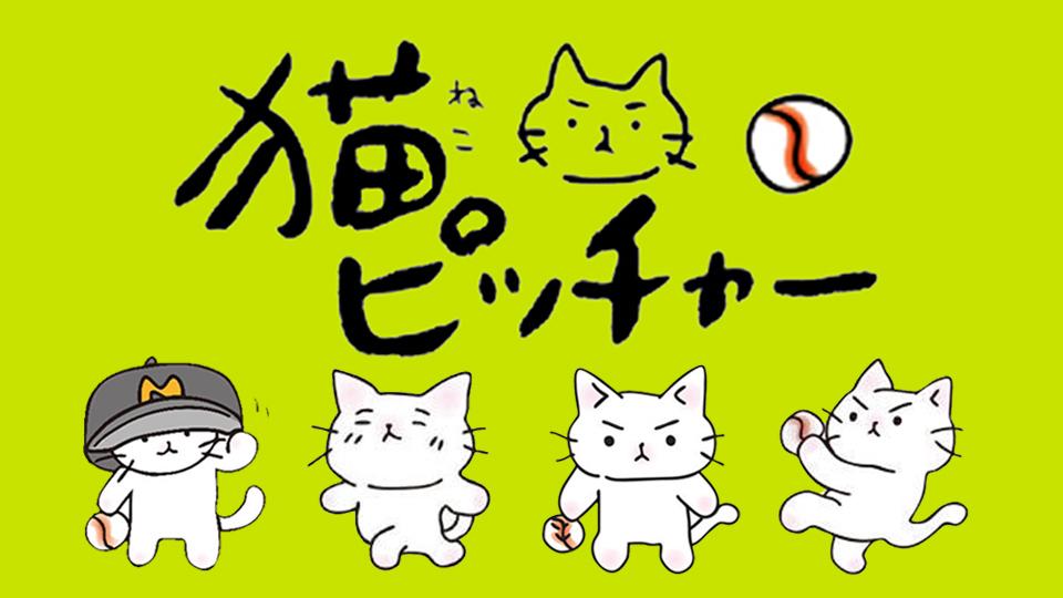 猫ピッチャー日記