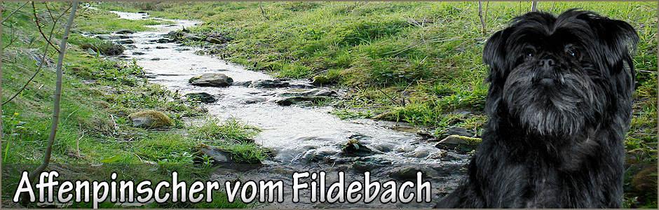 Banner mit Clarissa und dem Fildebach