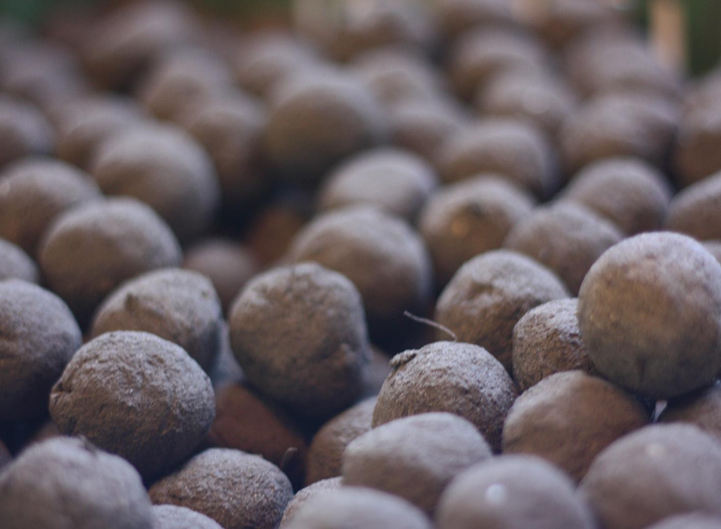 Trockene Seedbombs