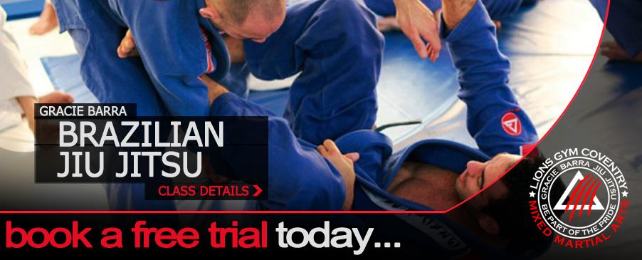 Image Result For Download Jiu Jitsu Booka