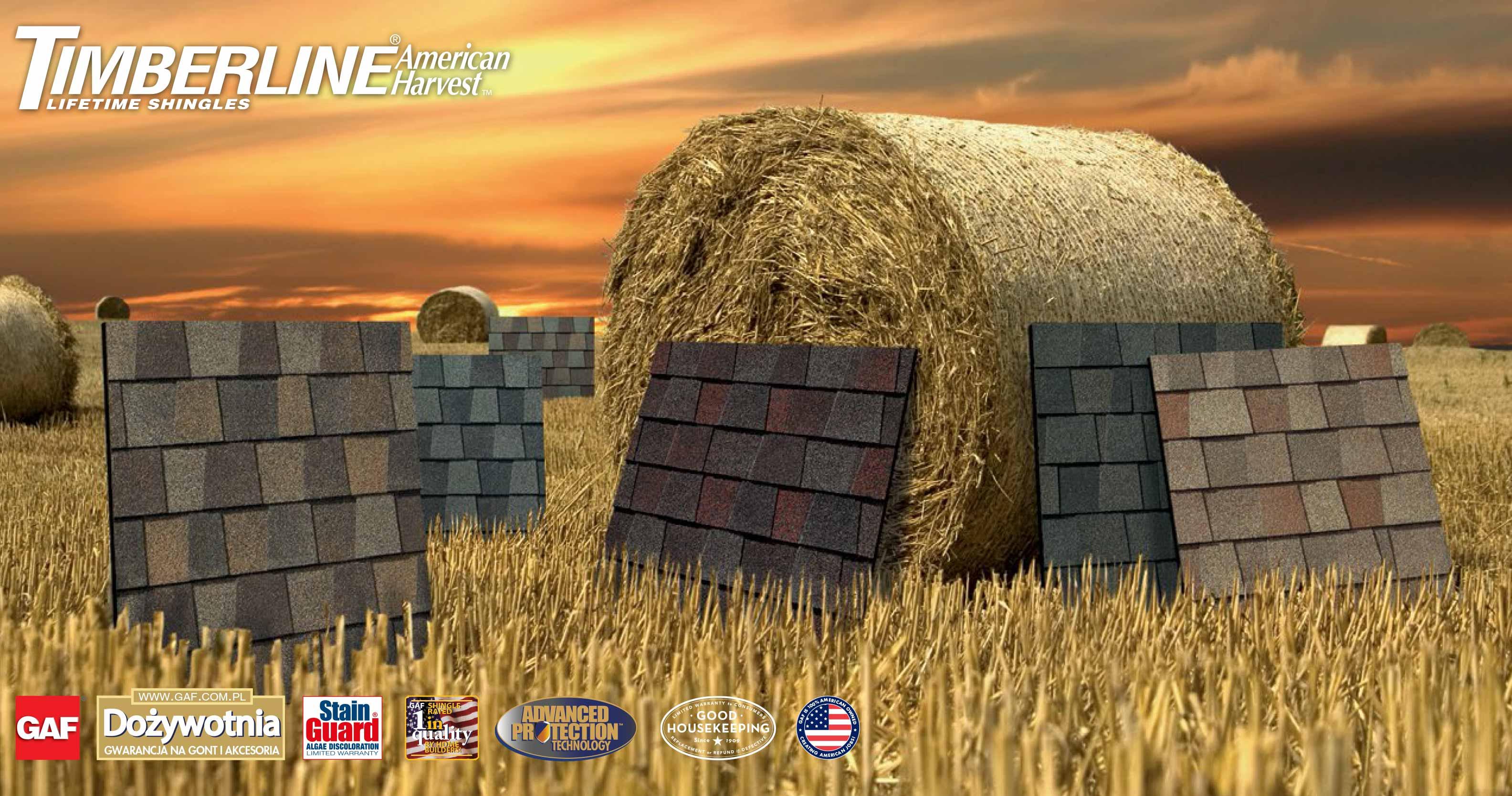Gont bitumiczny Timberline American Harvest