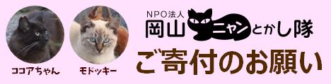 岡山ニャンとかし隊の寄付のお願い