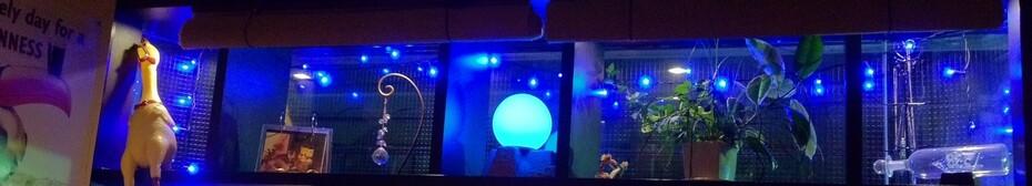 下北沢 Blue Moon
