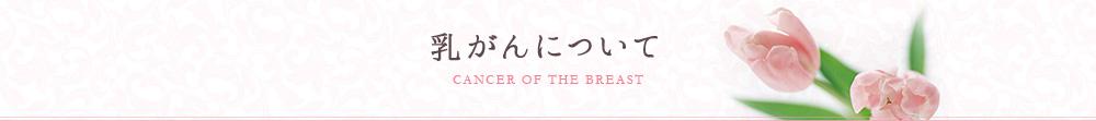 乳がんについて