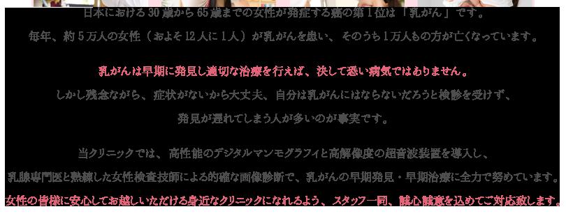 日本における30歳から65歳までの女性が発症する癌の第1位は「乳がん」です。毎年、約5万人の女性(およそ12人に1人)が乳がんを患い、そのうち1万人もの方が亡くなっています。乳がんは早期に発見し適切な治療を行えば、決して恐い病気ではありません。しかし残念ながら、症状がないから大丈夫、自分は乳がんにはならないだろうと検診を受けず、発見が遅れてしまう人が多いのが事実です。当クリニックでは、高性能のデジタルマンモグラフィと高解像度の超音波装置を導入し、乳腺専門医と熟練した女性検査技師による的確な画像診断で、乳がんの早期発見・早期治療に全力で努めています。女性の皆様に安心してお越しいただける身近なクリニックになれるよう、スタッフ一同、誠心誠意を込めてご対応致します。