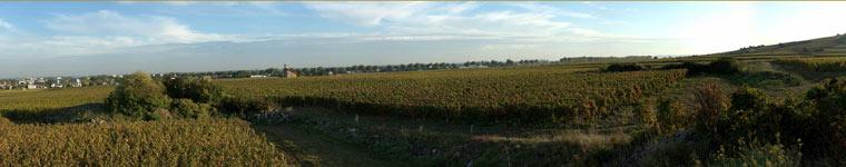Vignoble de Beaune nord en octobre