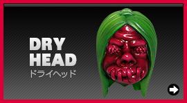 DRY HEAD-ドライヘッド