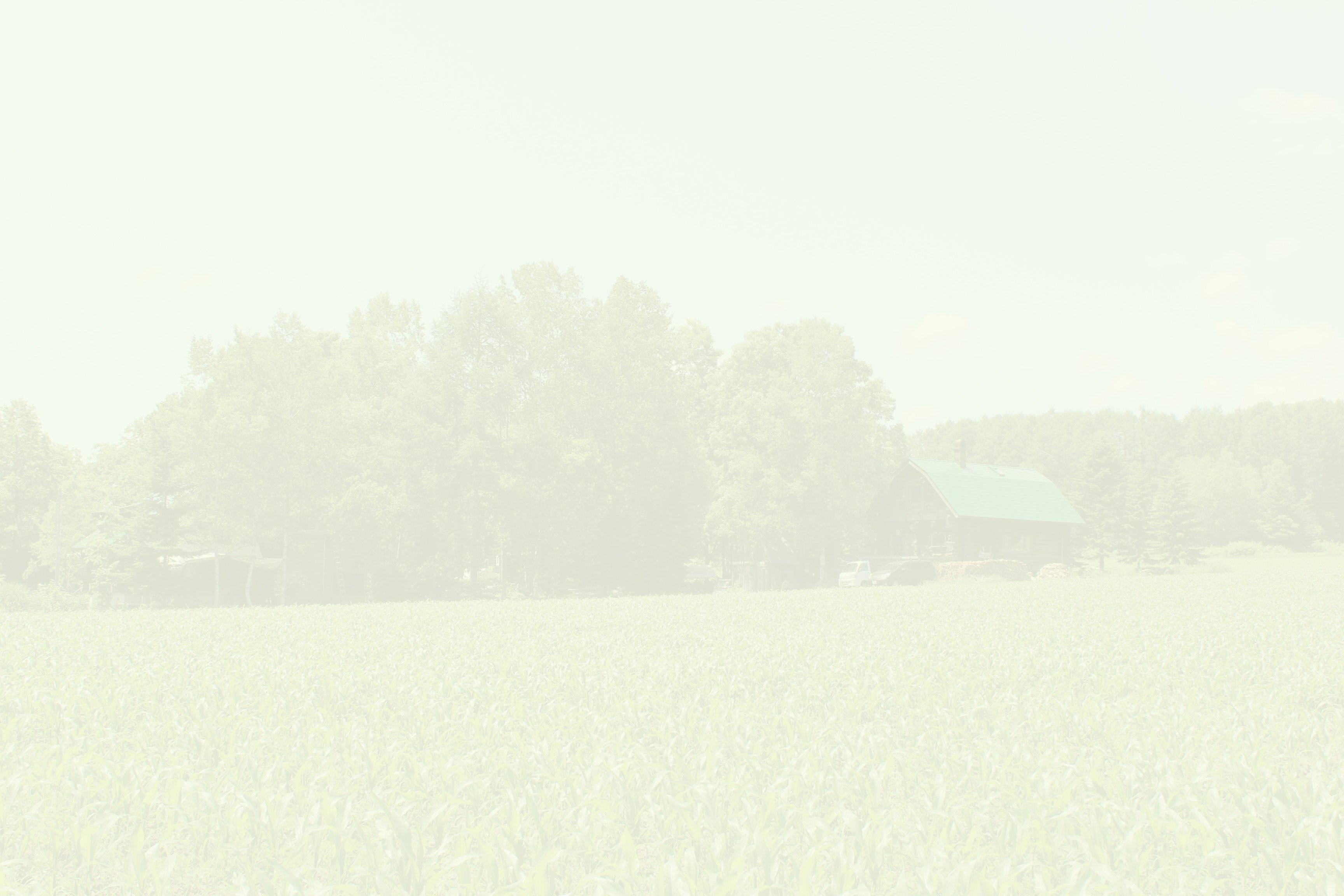 ニセココテージ
