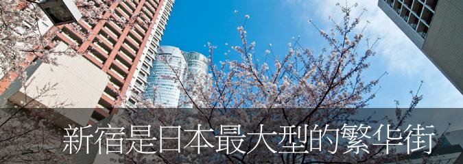 Heart of Tokyo