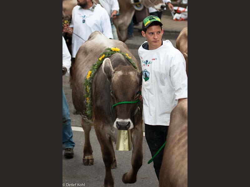 festumzug-700-jahre-morgarten-oberaegeri-65