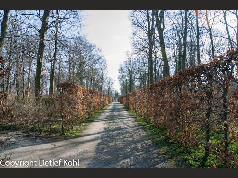 potsdam-park-sans-souci-2005-114