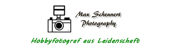 SH-Photography
