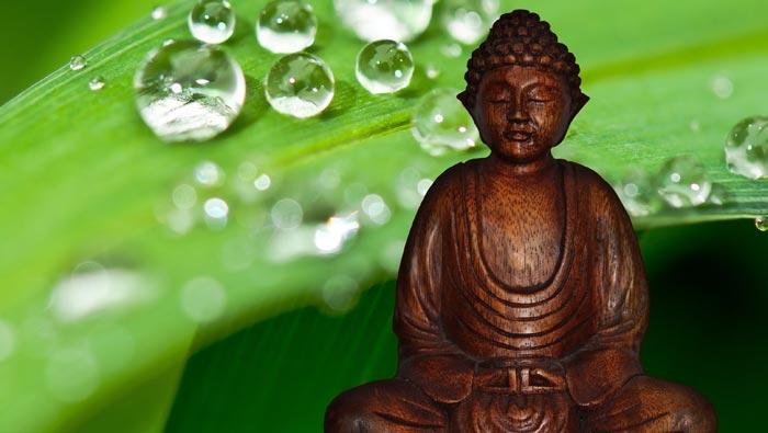 Ouverture du chakra racine