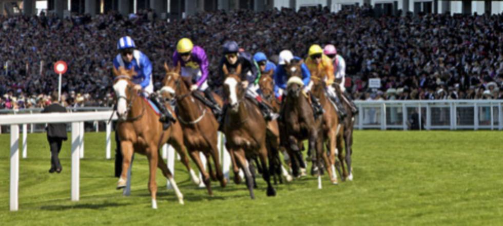 Reisen zu Pferderennen Royal Ascot England Großbritannien